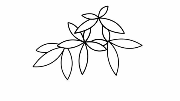 发财树盆栽简笔画