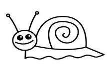 一步步学会画一只蜗牛