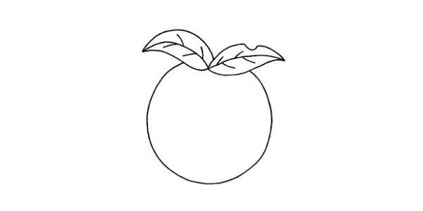 卡通的苹果简笔画