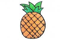 简单漂亮的菠萝简笔画