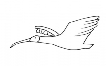 飞翔的朱鹮简笔画