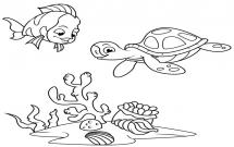 海底世界海龟和珊瑚简笔画