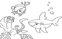 海底世界珊瑚鱼和鲨鱼简笔画