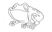 关于青蛙的儿童简笔画