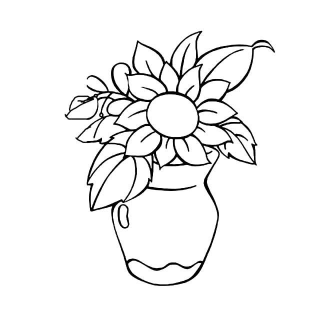 花屏里的花朵简笔画