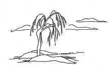 简单写意的柳树简笔画