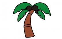 带颜色的椰树简笔画教程