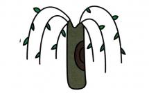 简单涂色的柳树简笔画