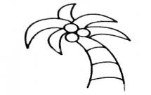 三步教你画一棵椰子树