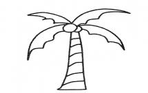 5款关于椰树的简笔画大全