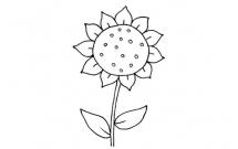 向日葵怎么画比较简单