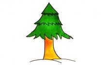 儿童学画松树简笔画步骤教程