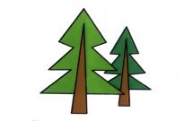 两颗小松树的简笔画