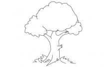 四步学会画一颗简单的大树