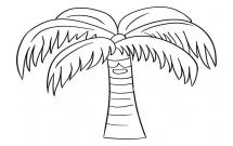 一棵粗壮的椰子树简笔画教程