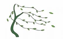 随风飘扬的柳树简笔画