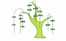 简单漂亮的柳树简笔画