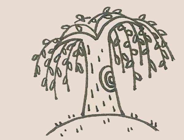 枝繁叶茂的柳树简笔画