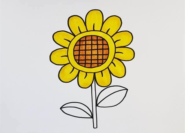 漂亮涂色的向日葵简笔画教程