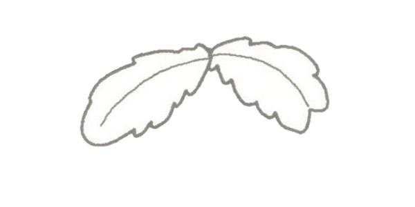 椰子树简笔画的画法步骤